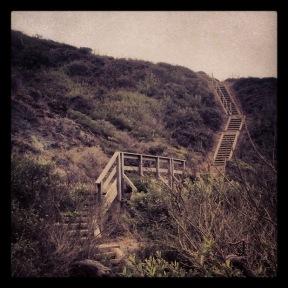 Presidio: Battieries to Bluffs Stairs2