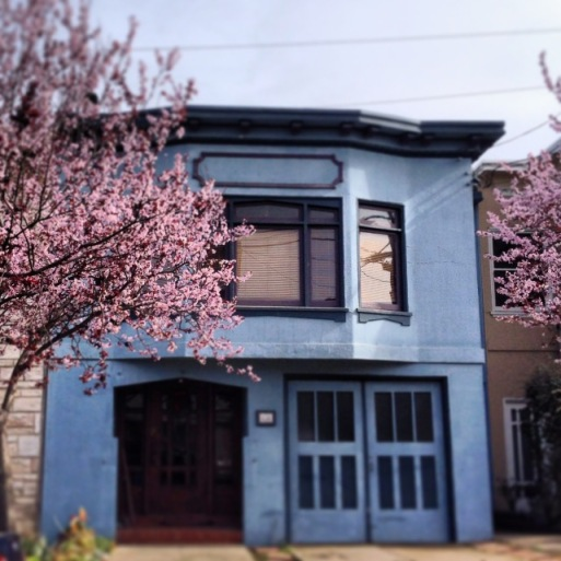 cherry blossoms against a blue house
