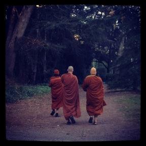 Golden Gate Park: Monks