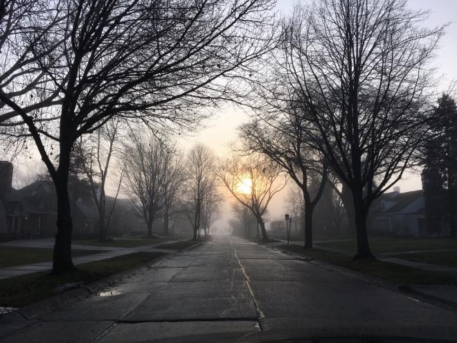 fog-1024x768